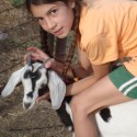 Love of Animals: Ella's Support for Heifer International