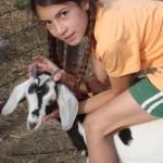 Love of Animals: Ella's Support for Heifer International