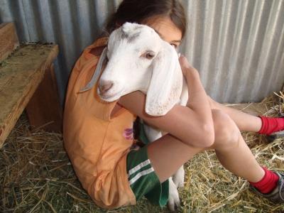 ej-goat